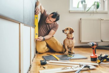 Man renovating home with puppy next to hime