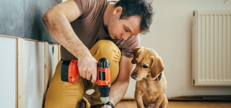 Man completing DIY renovations with his puppy next to hime