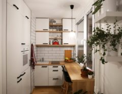 White kitchen an a tiny house
