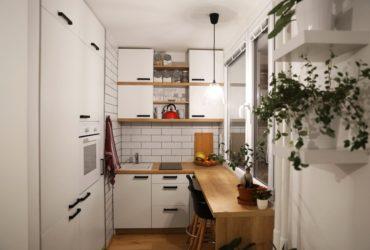 White kitchen an a tiny house