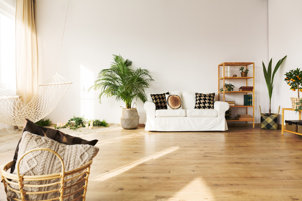 Large room with timber floors, a white couch and several potted plants