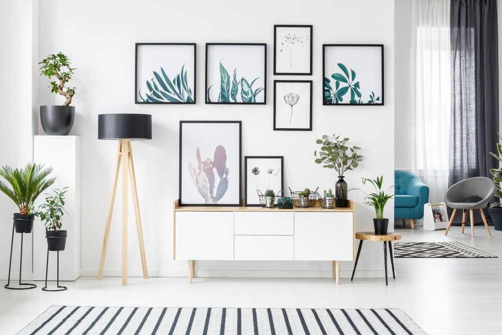 White wall of a living room with several plant posters on it