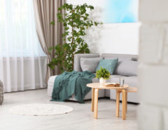 Clean dining room with vinyl floors, a grey couch and potted plant
