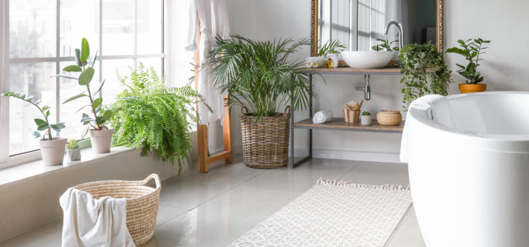 A modern bathroom with lots of indoor plants