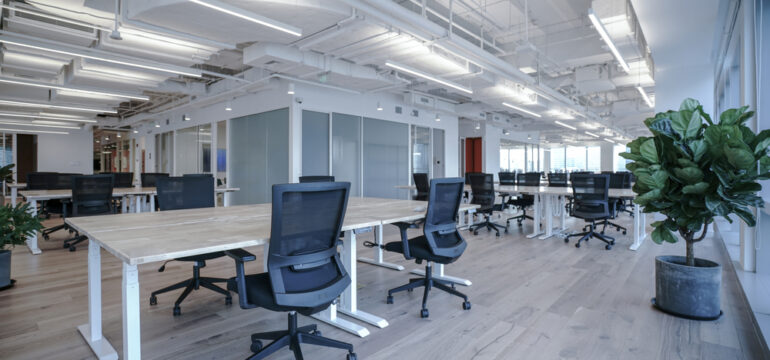 Large open plan office space with high ceilings and timber floors