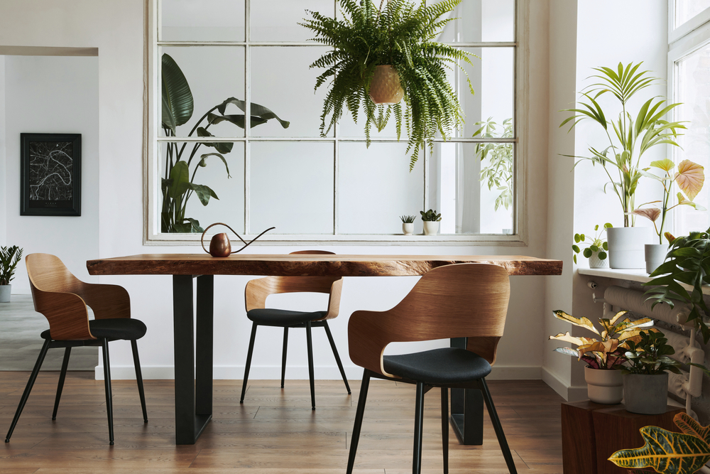 Bright dining room with round timber table and hanging plants